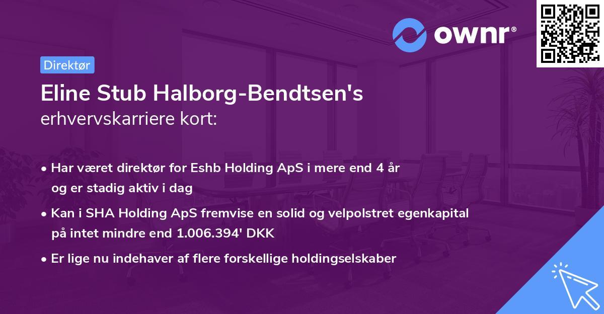 Eline Stub Halborg-Bendtsen's erhvervskarriere kort