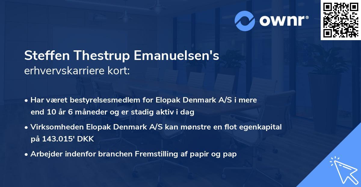 Steffen Thestrup Emanuelsen's erhvervskarriere kort