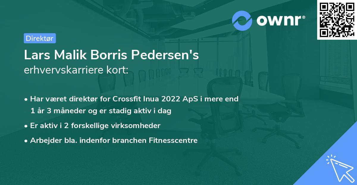 Lars Malik Borris Pedersen's erhvervskarriere kort