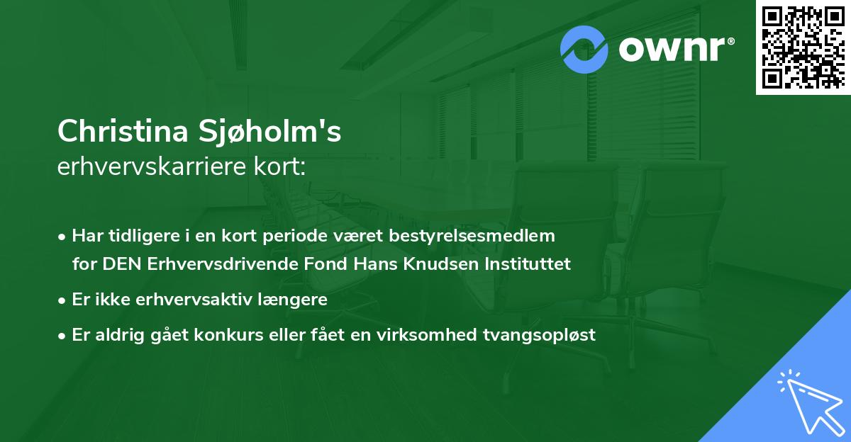 Christina Sjøholm's erhvervskarriere kort