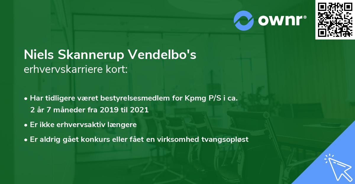 Niels Skannerup Vendelbo's erhvervskarriere kort