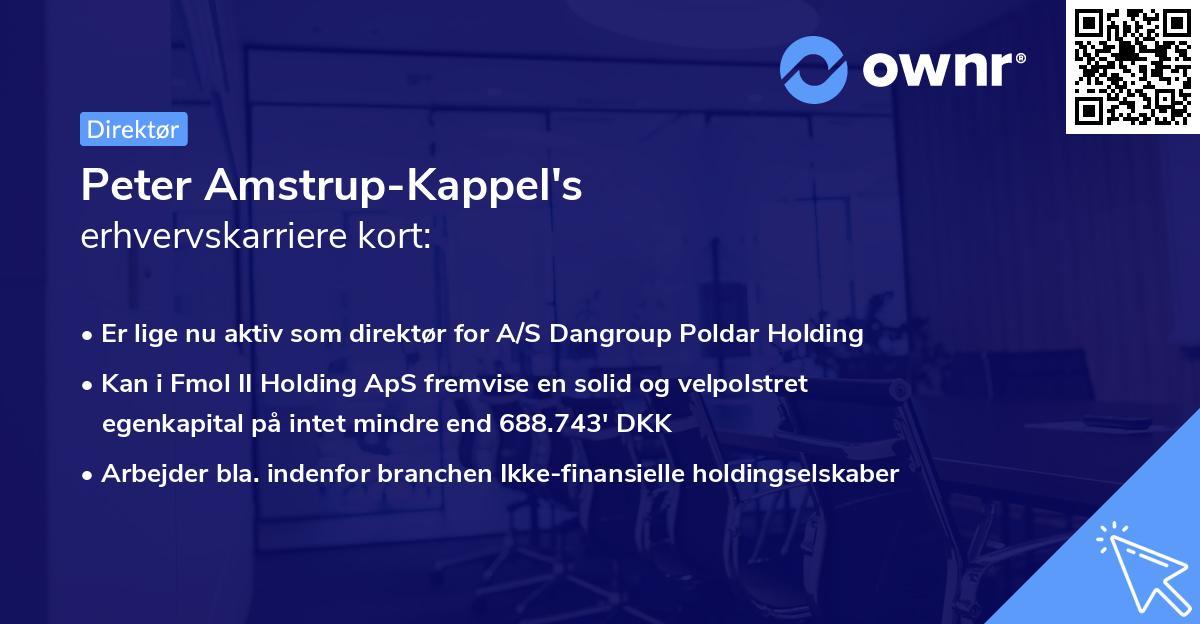 Peter Amstrup-Kappel's erhvervskarriere kort
