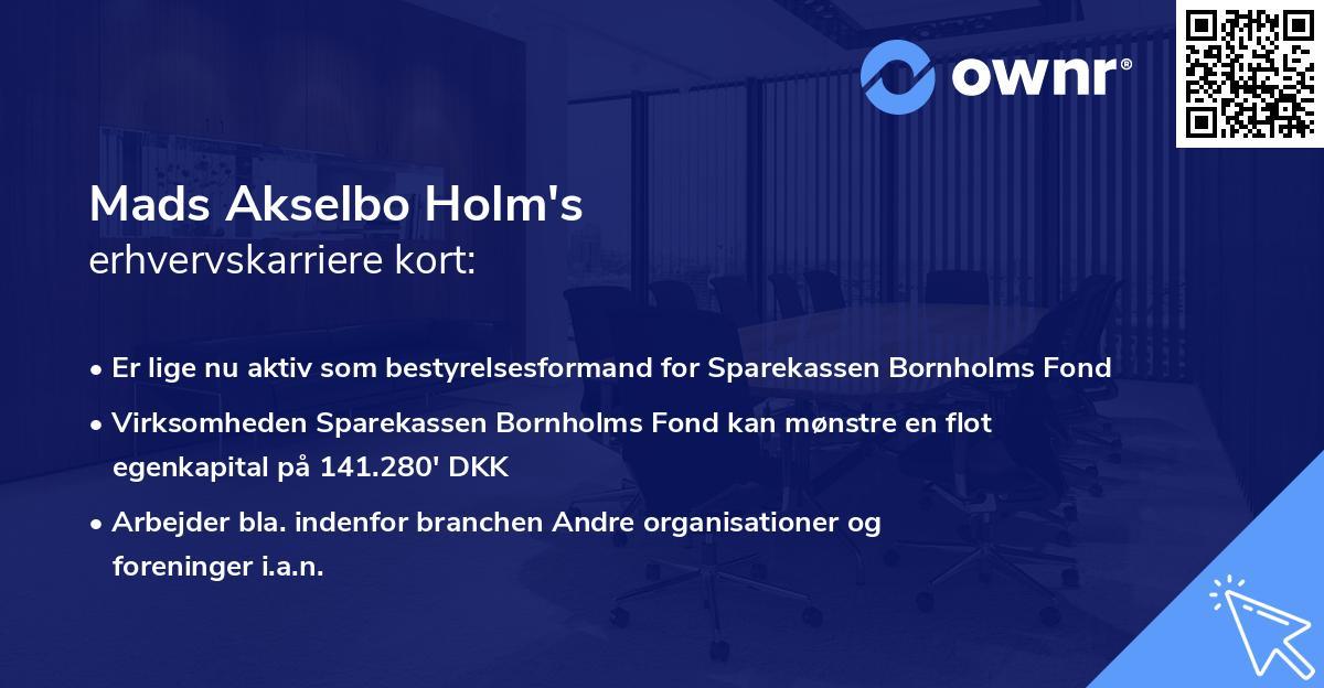 Mads Akselbo Holm's erhvervskarriere kort
