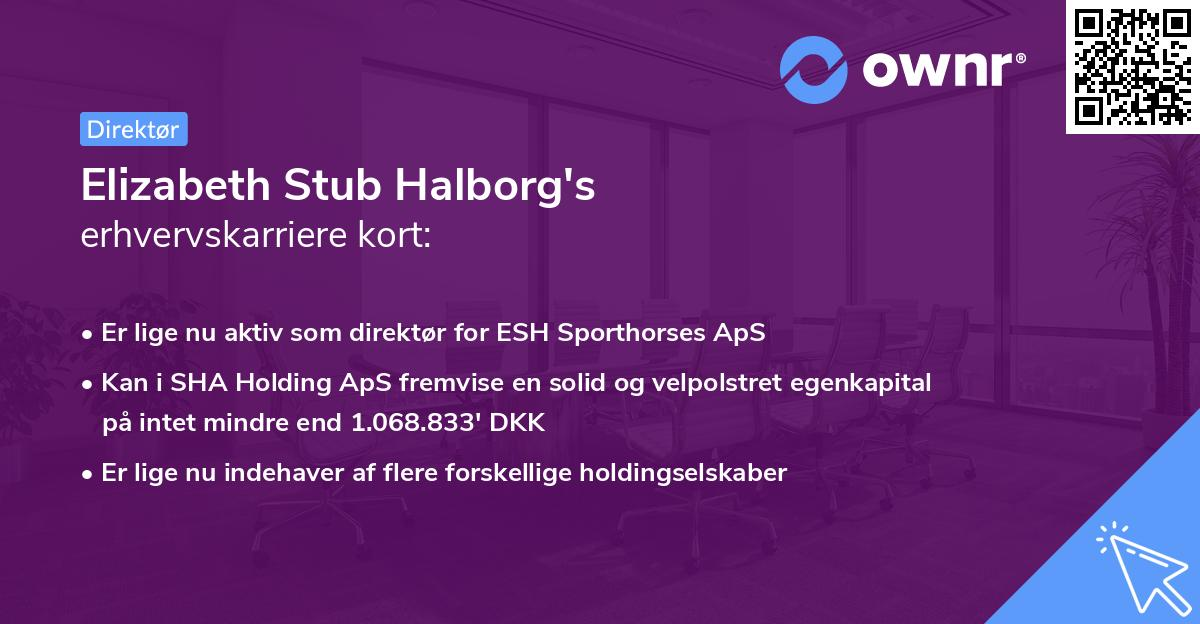 Elizabeth Stub Halborg's erhvervskarriere kort