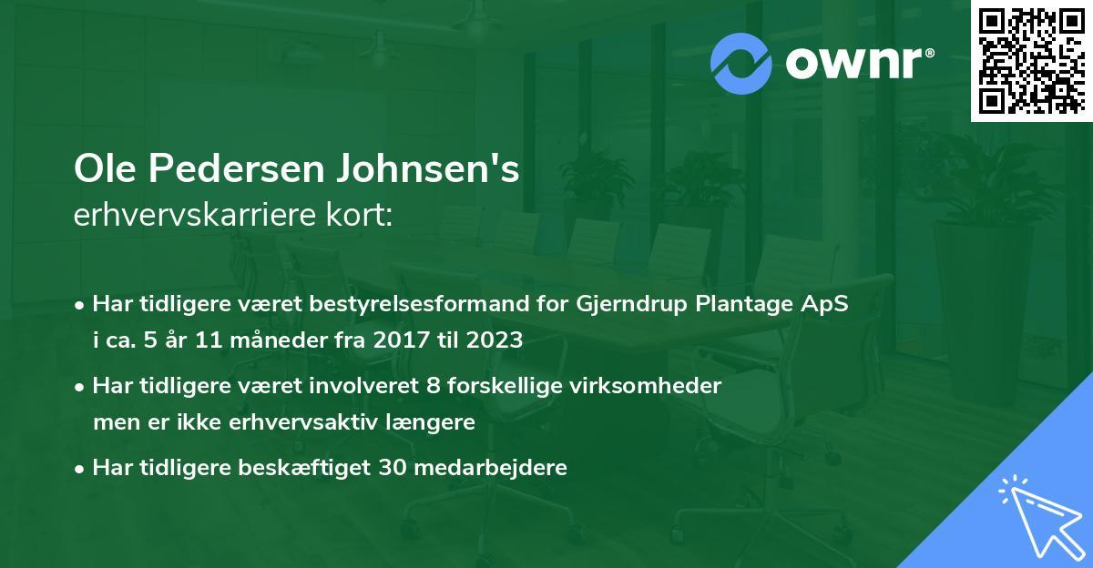 Ole Pedersen Johnsen's erhvervskarriere kort