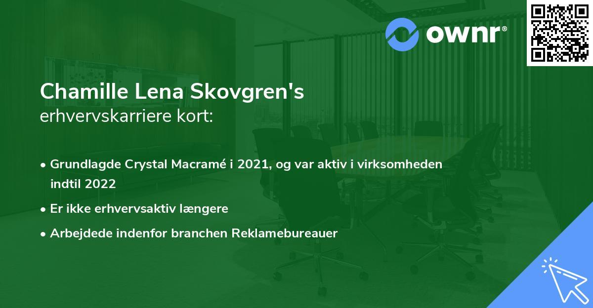 Camilla Lena Bech Skovgren's erhvervskarriere kort