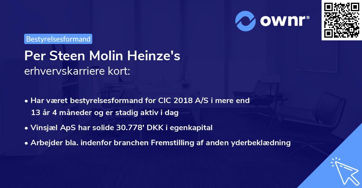 Per Steen Molin Heinze's erhvervskarriere kort