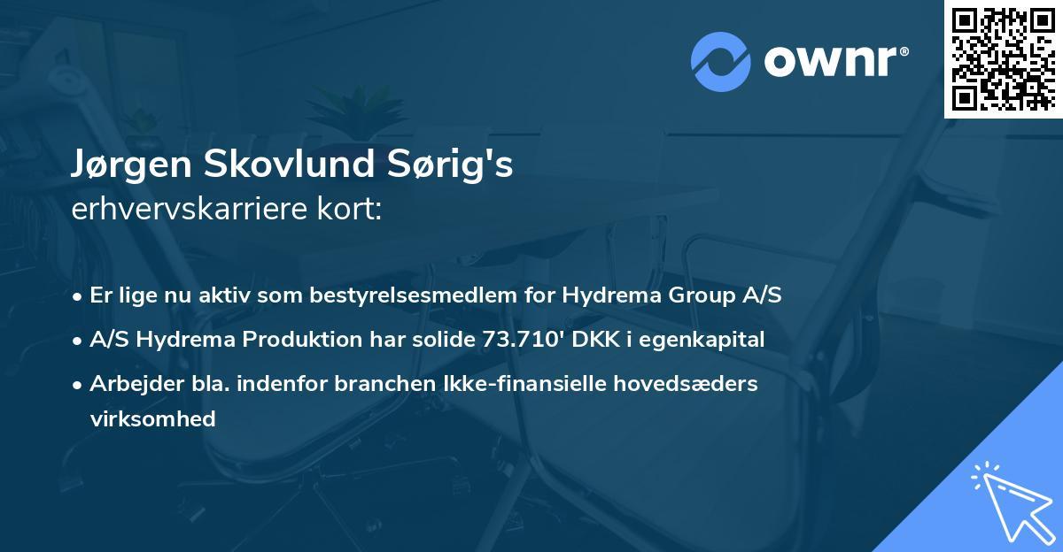 Jørgen Skovlund Sørig's erhvervskarriere kort
