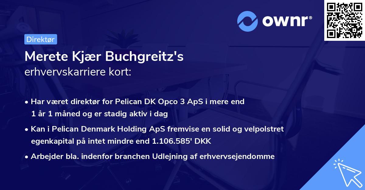 Merete Kjær Buchgreitz's erhvervskarriere kort