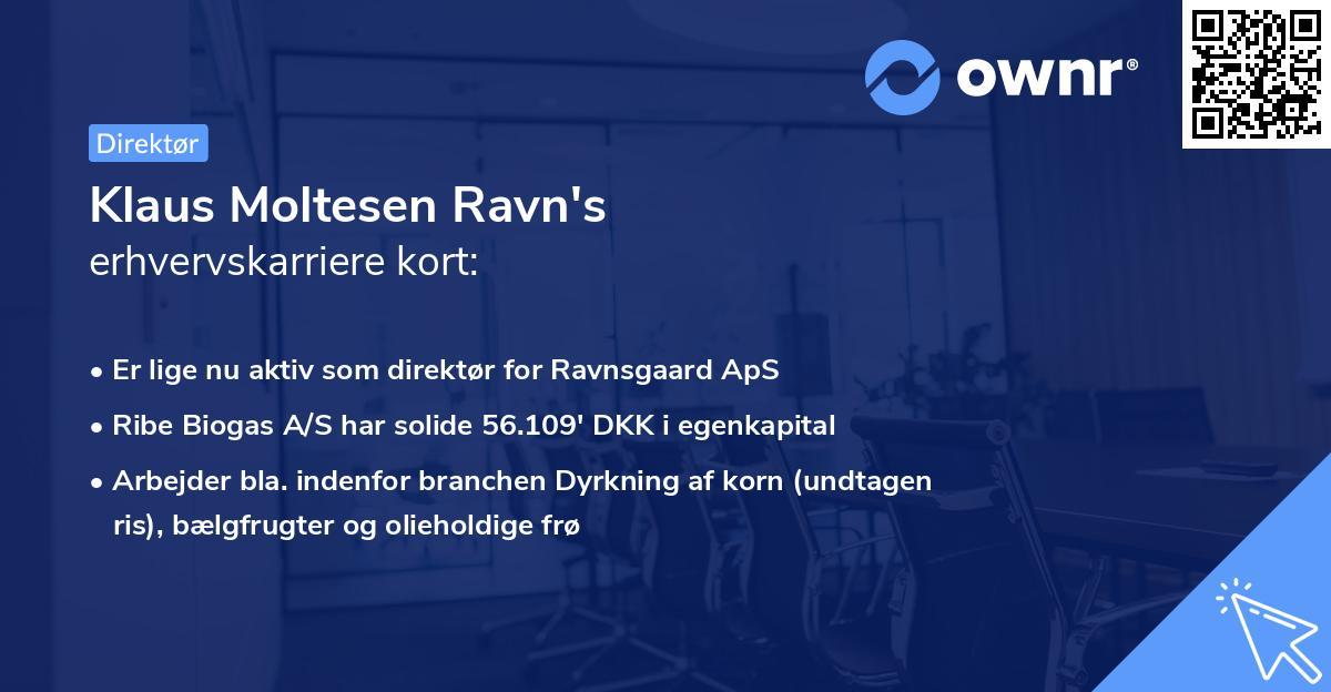 Klaus Moltesen Ravn's erhvervskarriere kort