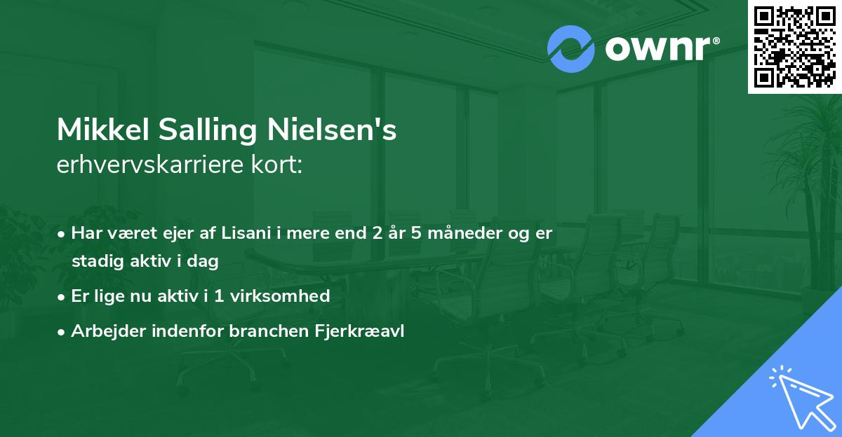 Mikkel Salling Nielsen's erhvervskarriere kort