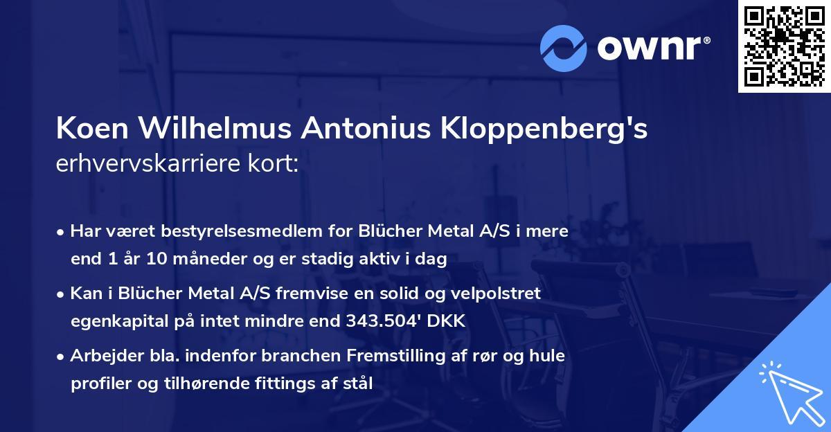 Koen Wilhelmus Antonius Kloppenberg's erhvervskarriere kort