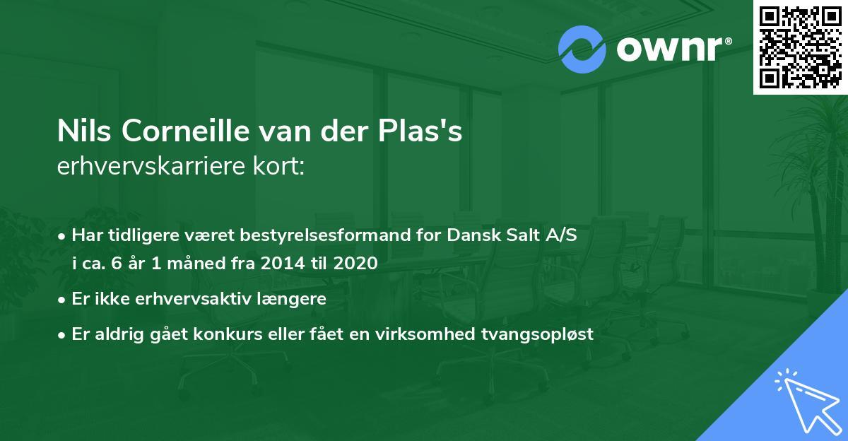 Nils Corneille van der Plas's erhvervskarriere kort