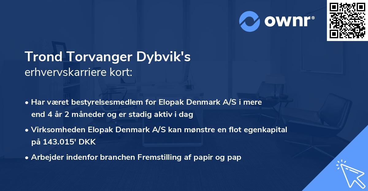 Trond Torvanger Dybvik's erhvervskarriere kort
