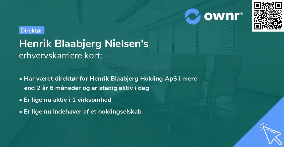Henrik Blaabjerg Nielsen's erhvervskarriere kort