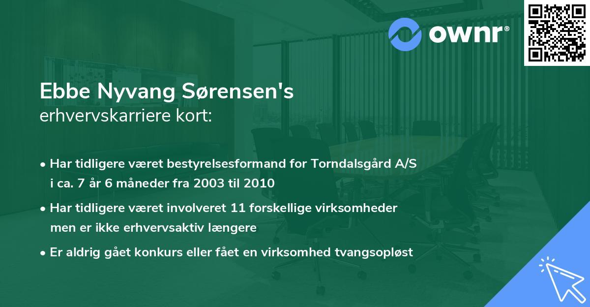 Ebbe Nyvang Sørensen's erhvervskarriere kort