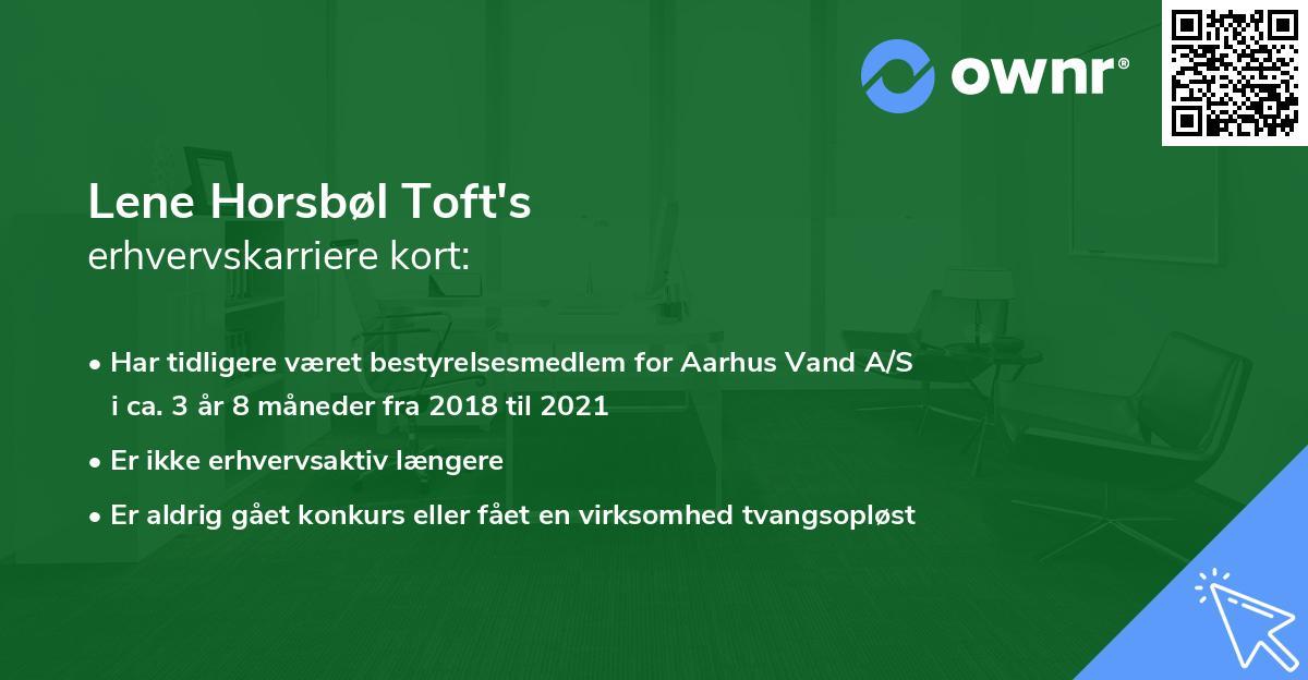 Lene Horsbøl Toft's erhvervskarriere kort