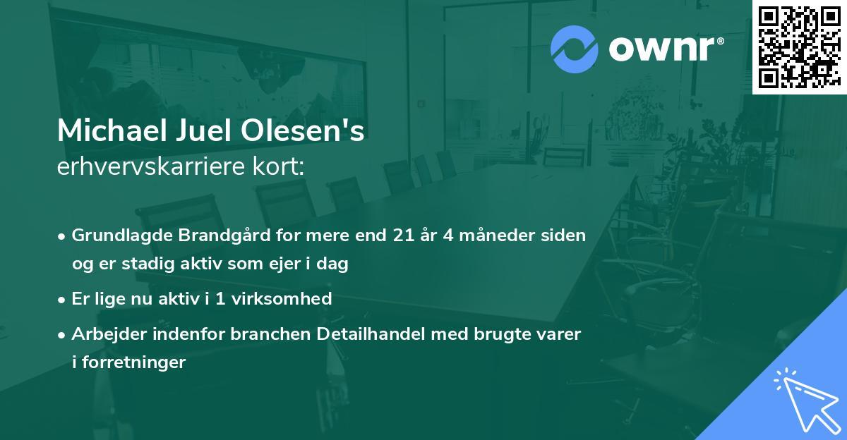 Michael Juel Olesen's erhvervskarriere kort