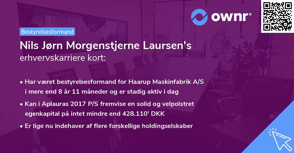 Nils Jørn Morgenstjerne Laursen's erhvervskarriere kort