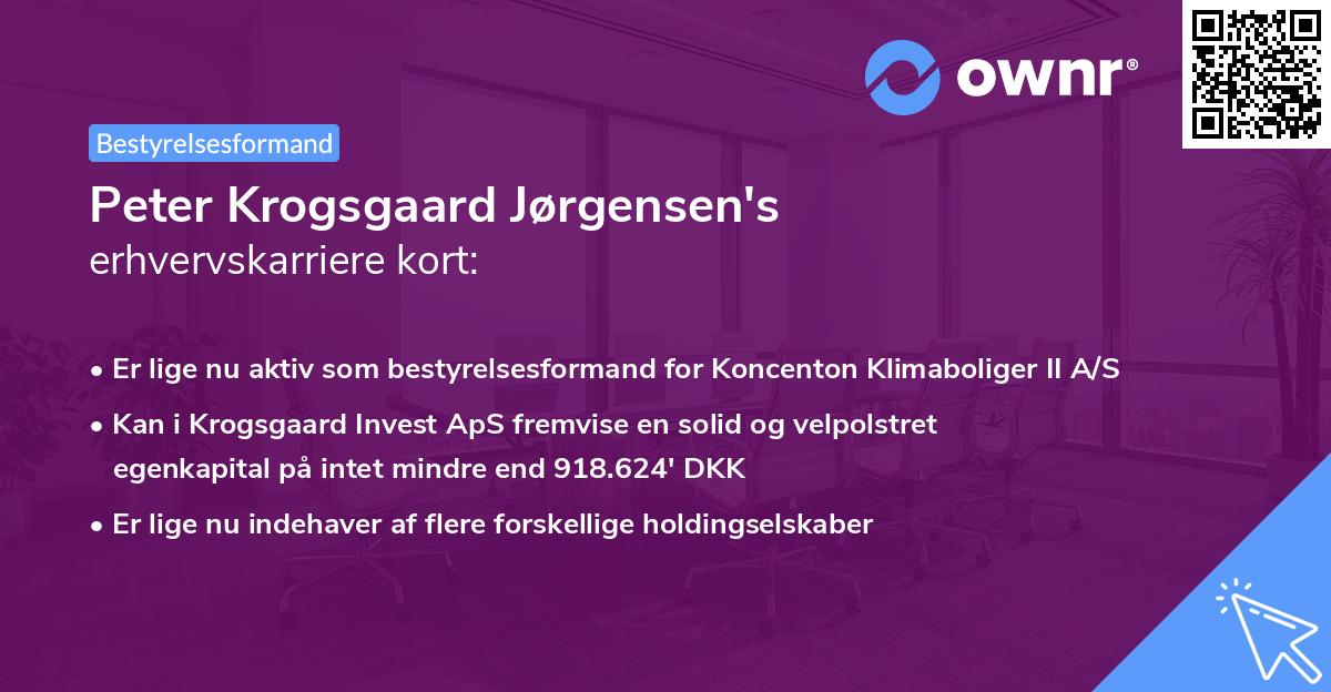 Peter Krogsgaard Jørgensen's erhvervskarriere kort