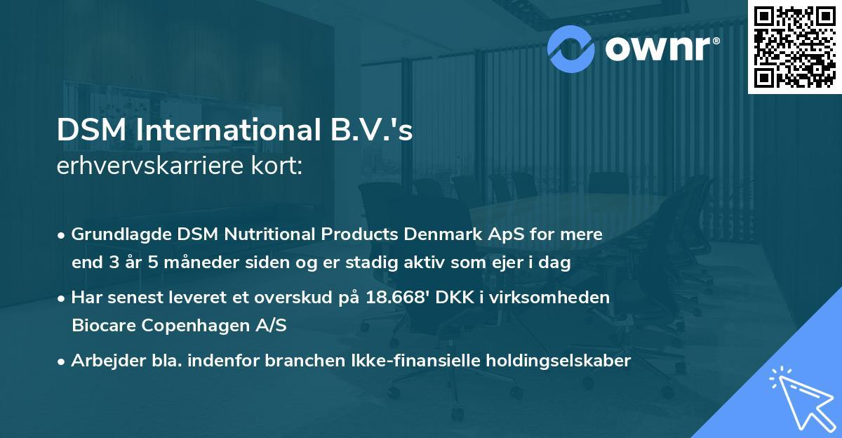 DSM International B.V.'s erhvervskarriere kort
