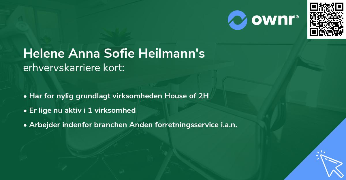 Helene Anna Sofie Heilmann's erhvervskarriere kort