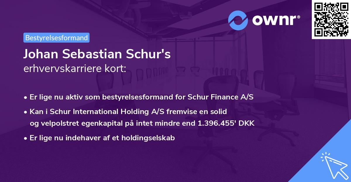 Johan Sebastian Schur's erhvervskarriere kort