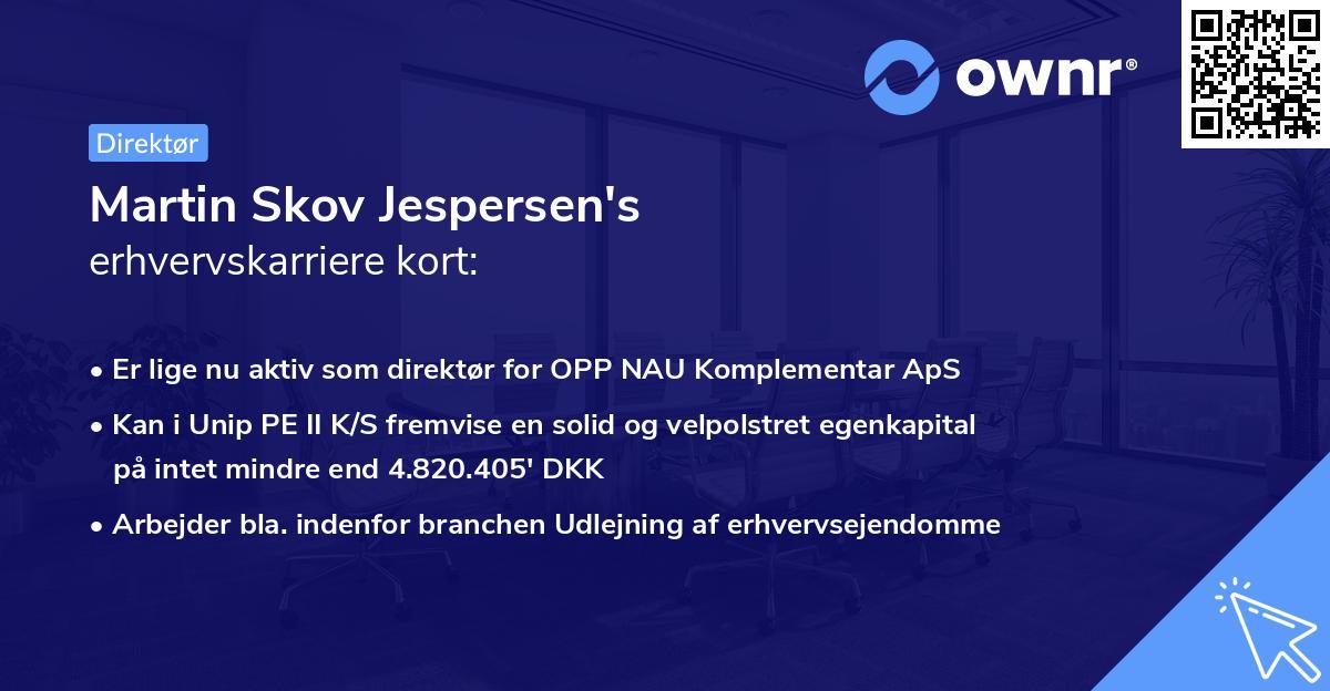 Martin Skov Jespersen's erhvervskarriere kort
