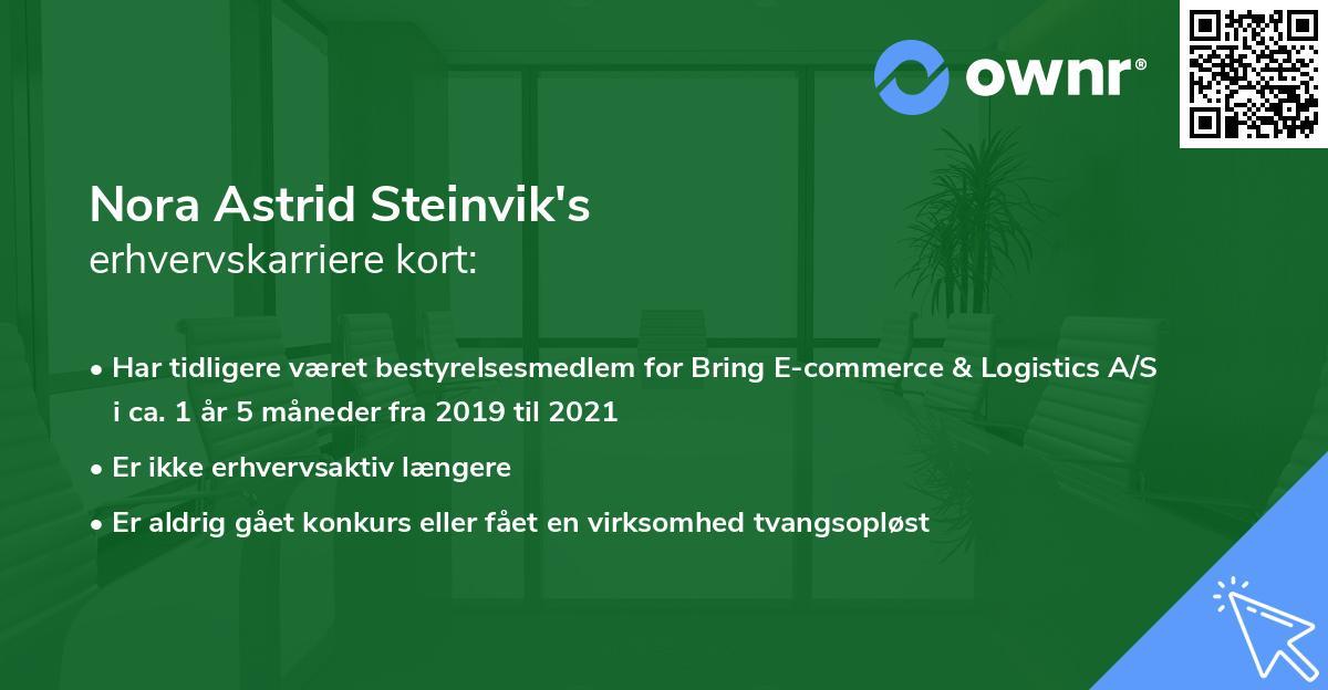 Nora Astrid Steinvik's erhvervskarriere kort