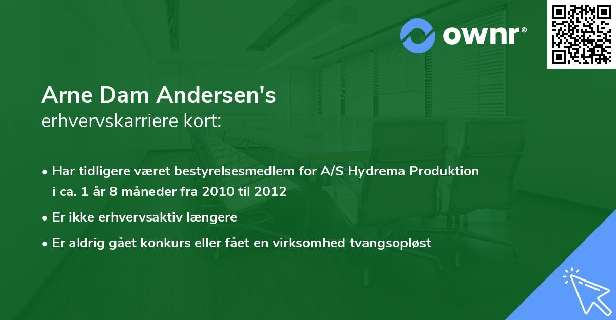 Arne Dam Andersen's erhvervskarriere kort