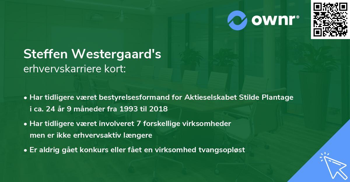 Steffen Westergaard's erhvervskarriere kort