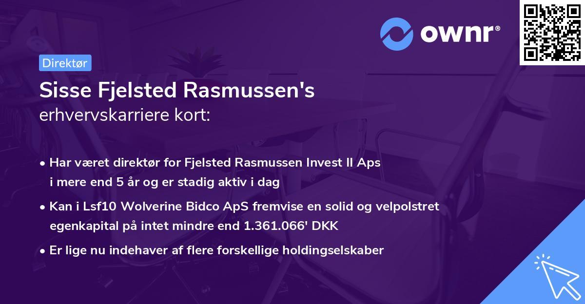 Sisse Fjelsted Rasmussen's erhvervskarriere kort