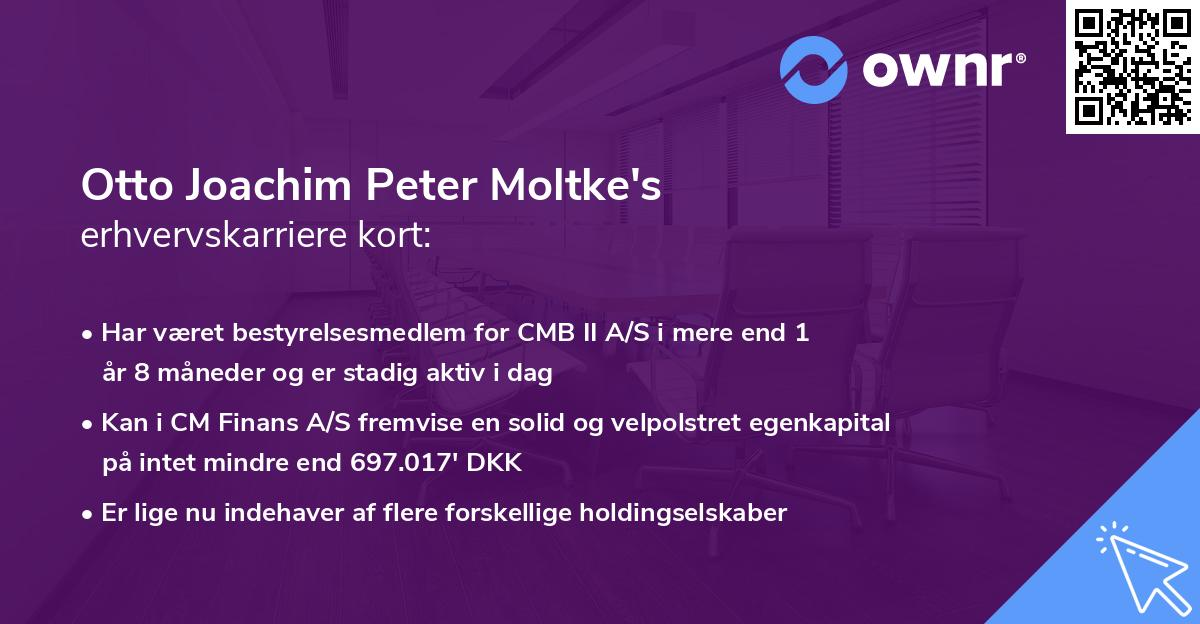 Otto Joachim Peter Moltke's erhvervskarriere kort