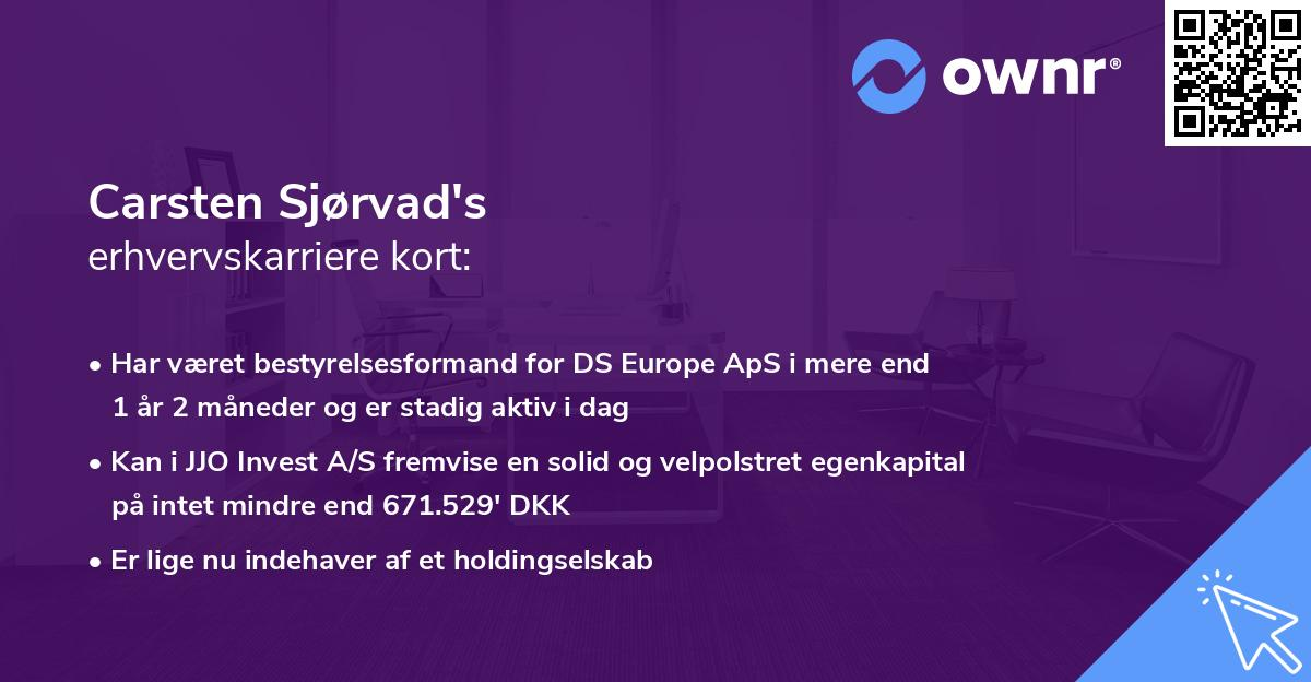 Carsten Sjørvad's erhvervskarriere kort