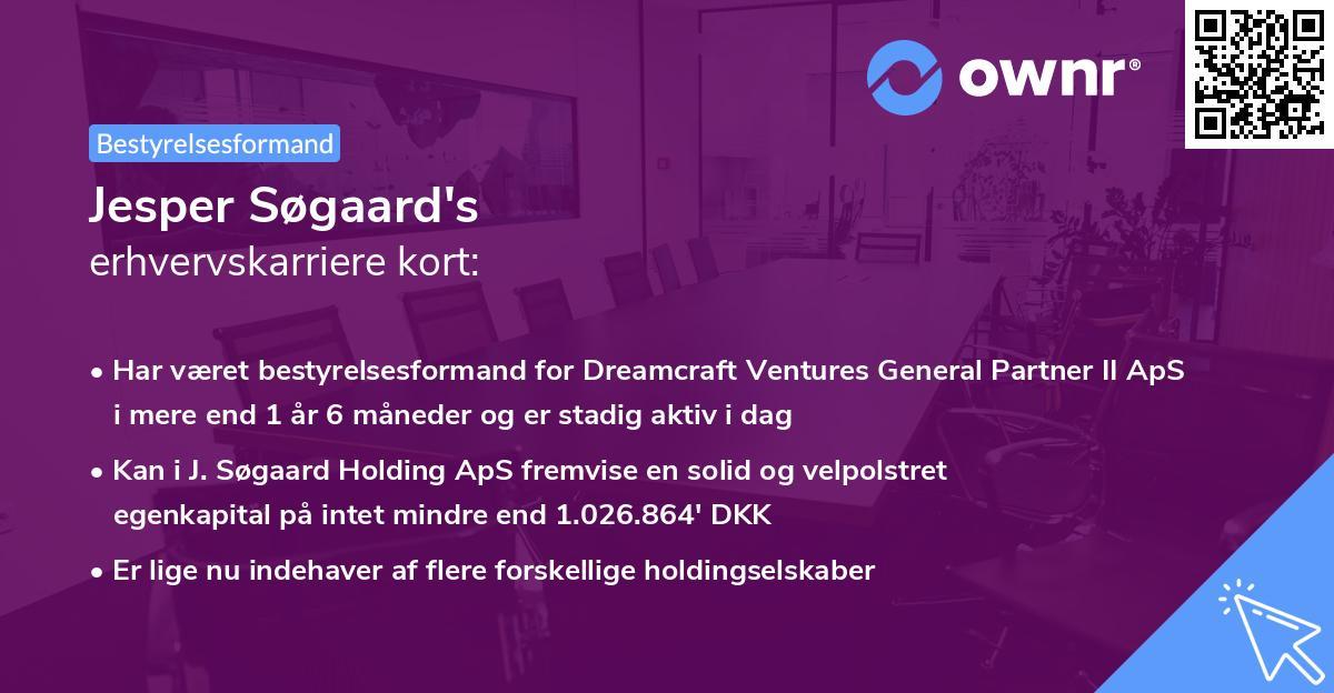 Jesper Søgaard's erhvervskarriere kort