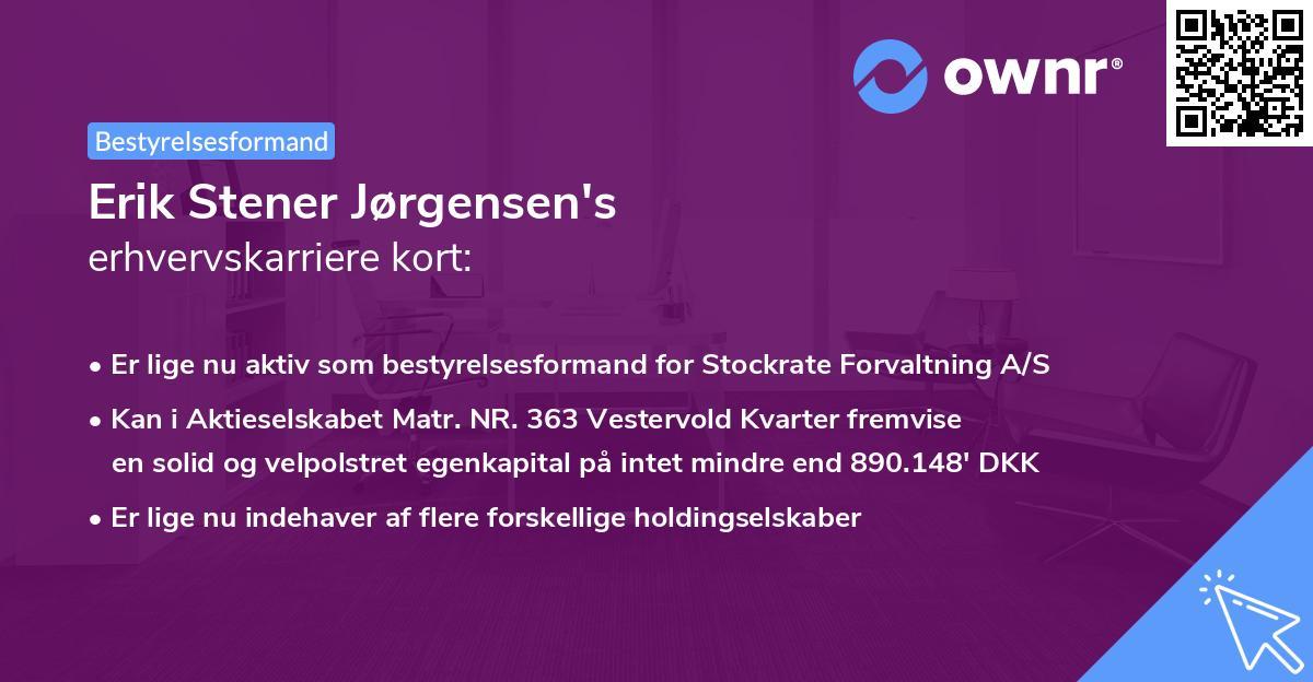 Erik Stener Jørgensen's erhvervskarriere kort