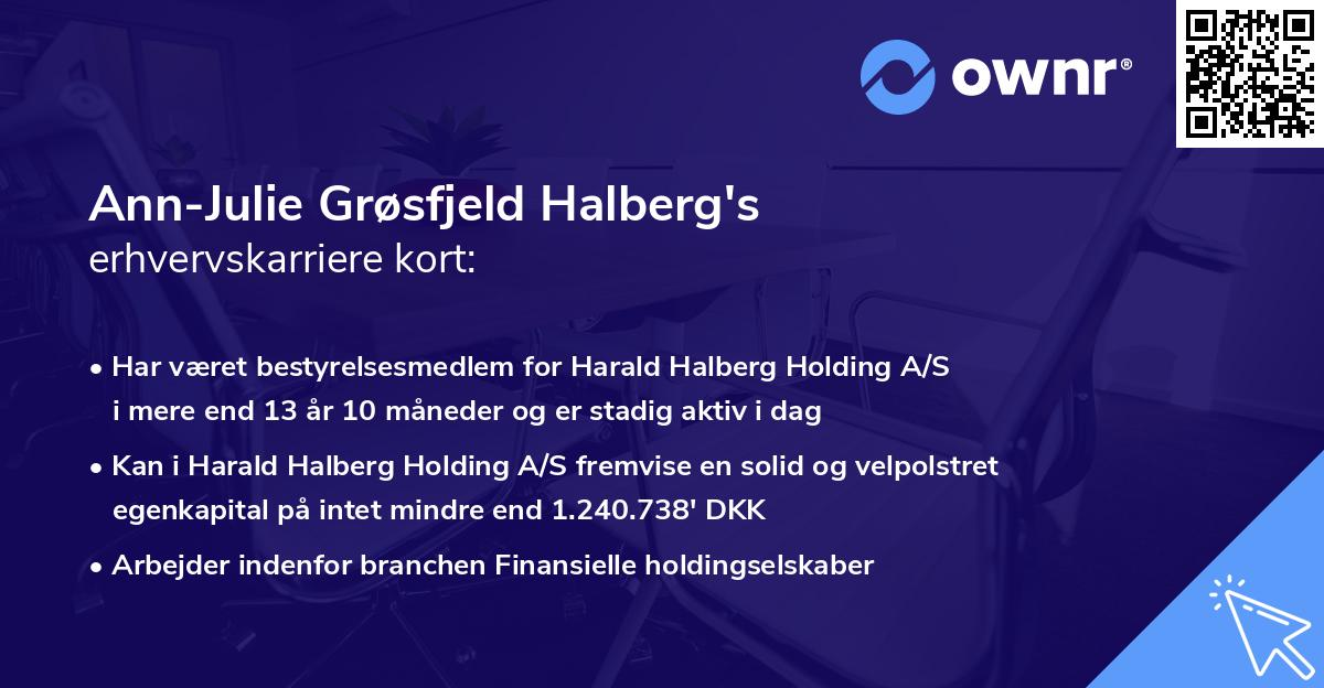 Ann-Julie Grøsfjeld Halberg's erhvervskarriere kort