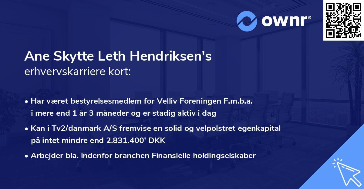 Ane Skytte Leth Hendriksen's erhvervskarriere kort